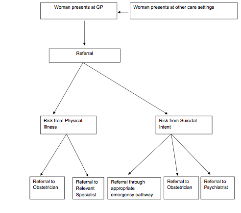 Flowchart for geting an abortion under the Irish Protection of Life During Pregnancy Act