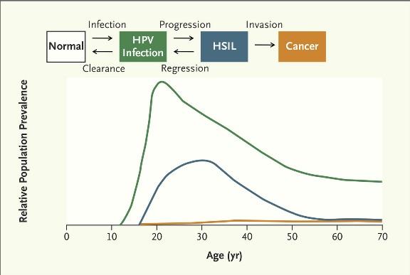 HPVprogression