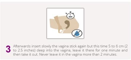 vaginastick3